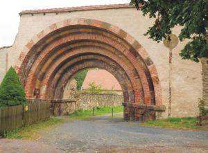 Read more about the article Sonntag, 9.8., Ausflug mit Mehrwert – Treibgutsammeln auf dem Weg zum Kloster Altzella!