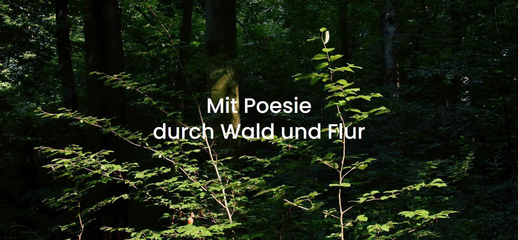Read more about the article Eine Lesung von und mit Jana Wuigk